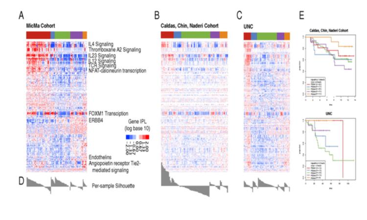 OUH - Cancer Genome Variation (Kristensen)