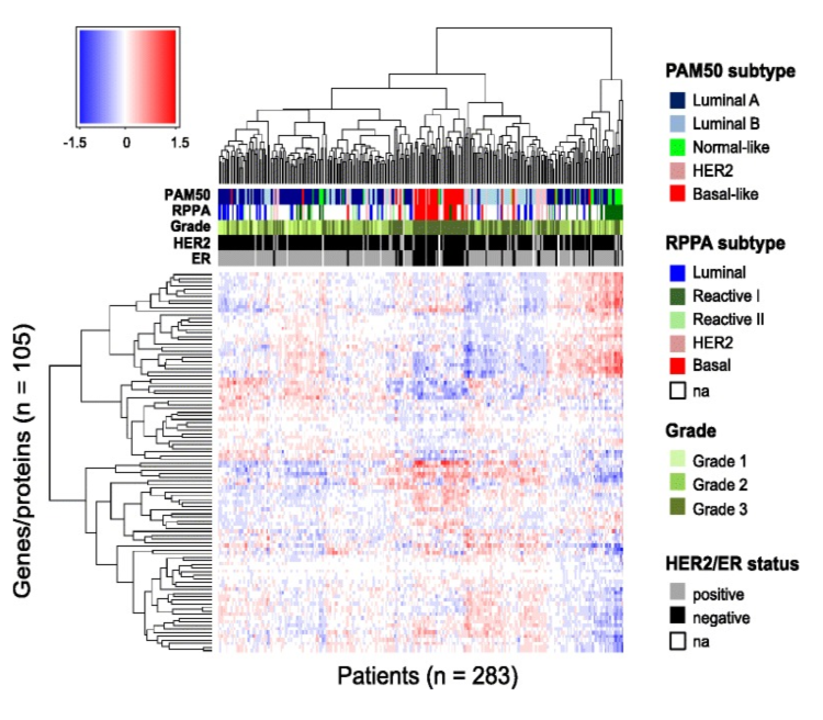 Figure 6. Patient-specific predicted effects of miRNA on protein. Rows represent the 105 genes/proteins and columns represent the 283 patients. The color bars under the dendrogram represent PAM50 and RPPA molecular subtypes (mRNA and protein based, respectively), histological grade, human epidermal growth factor receptor 2 (HER2) status, and estrogen receptor (ER) status. The colors in the heatmap represent the patient-specific effects of miRNA on protein and are numerical values obtained by multiplying each miRNA coefficient (from the multivariate analysis) with the corresponding miRNA expression, in a given patient, for a given protein. The clustering of the proteins and patients was performed using Euclidean distance and complete linkage. Na, not available.