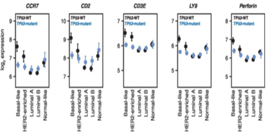 Figure 2. Figure 2. TP53 mutation status is associated with differential immumne cell infiltration in in Basal-like tumors. <br />Effect plots of expression of CCR7, CD2, CD3E, LY9, and perforin (PRF1) grouped by PAM50 subtype and TP53 mutation status. TP53-WT plotted in black, TP53-mutant plotted in blue. Points indicate mean, error bars indicate 95% confidence intervals calculated from twice the standard error.