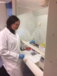 Sampling at the Norwegian Childhood Cancer Biobank (picture by Lars O. Baumbusch)