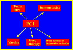 As indicated in the figure the PCI project can be divided into several subprojects. (click to enlarge)